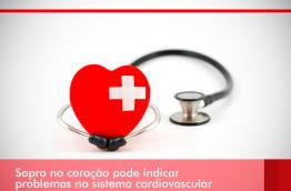 SOPRO NO CORAÇÃO PODE INDICAR PROBLEMAS NO SISTEMA CARDIOVASCULAR