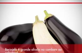 Berinjela é grande aliada no combate ao colesterol