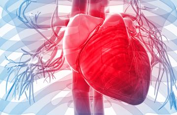 Problemas cardiovasculares são mais acentuados no verão