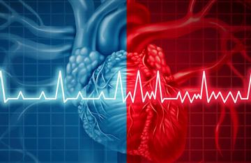 Fibrilação Atrial: Causas e Tratamento